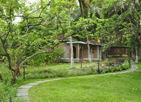 Ayurvedic Resort for Staying at Kairali The Ayurvedic Healing Village