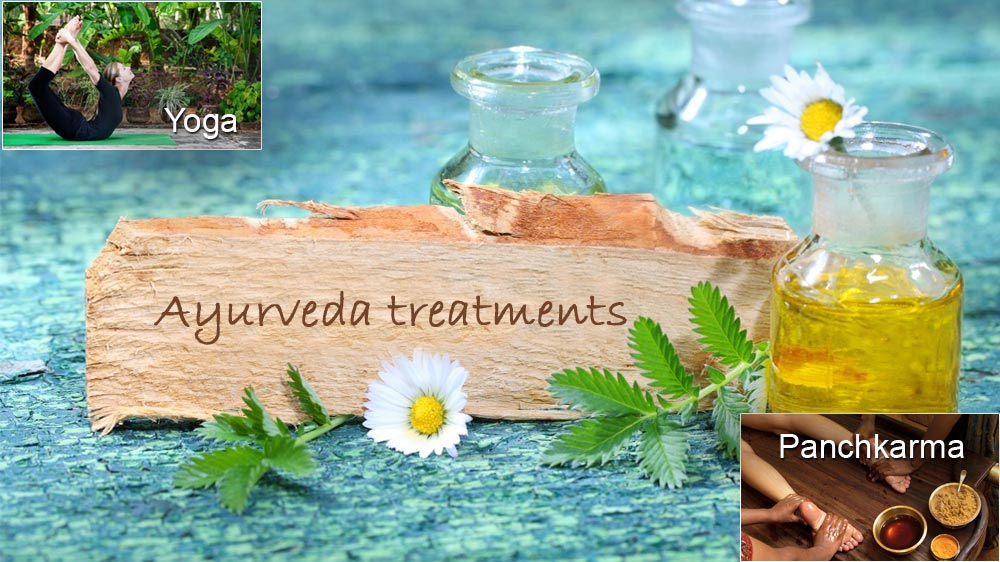 What are the treatment methods in Ayurveda?