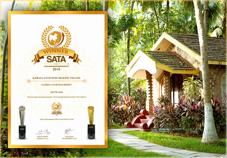 South Asia Travel Award